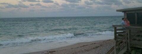 Ocean Grill is one of Favorite Seafood Restaurants in Florida.