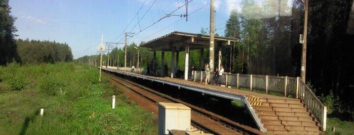 Ж/д станция «68 километр» is one of สถานที่ที่บันทึกไว้ของ Galina.
