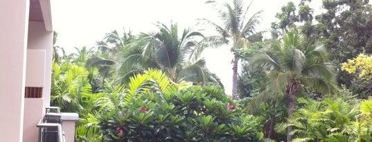 Sheraton Hua Hin Resort & Spa is one of 주변장소4.