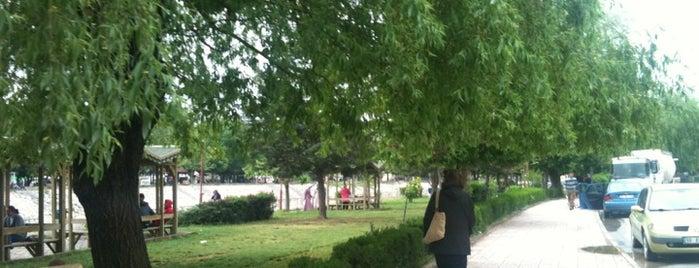 Şehitler Parkı is one of Lieux qui ont plu à renklimelodiblog.