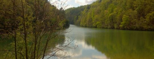 Steele Creek Park is one of Johnson City to do.