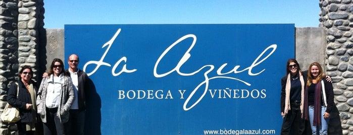 La Azul is one of Experience Mendoza.