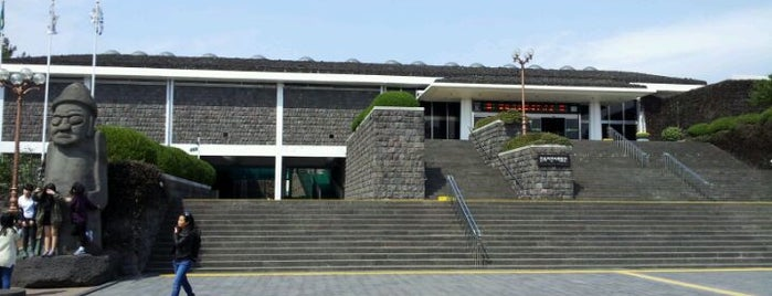 Jeju Museum of Folklore & Natural History is one of Jeju (제주도).