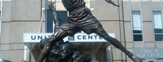 United Center is one of US Pro Sports Stadiums - ALL.