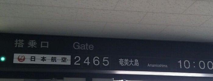 Gate 22 is one of 大阪国際空港(伊丹空港) 搭乗口 ITM gate.