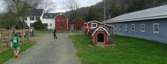 Gran-Val Scoop is one of สถานที่ที่ Bryan ถูกใจ.