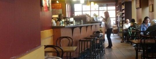 best pick up bar mississauga