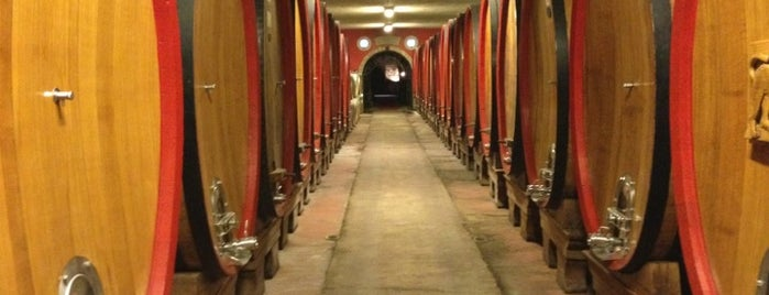 Castello Di Monsanto is one of Chianti Classico Producers.