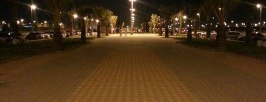 Al Hejrah Walk is one of Umrah.
