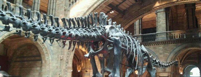 Natural History Museum is one of Tired of London, Tired of Life (Jan-Jun).