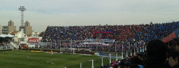 Estadio Don José Dellagiovanna (Tigre) is one of Argentina football stadiums.