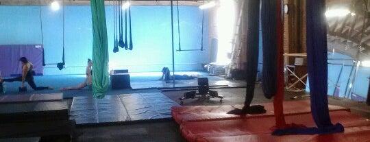 Cirque School is one of Lieux qui ont plu à Katherine.
