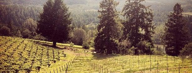 Burgess Cellars is one of Stevenson Favorite Wineries.