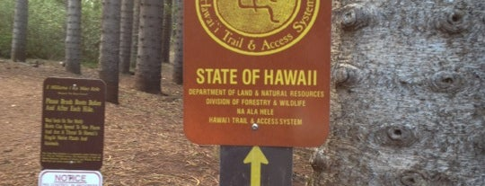 Waahila Ridge State Recreation Area is one of Favorite Local Kine Hawaii.
