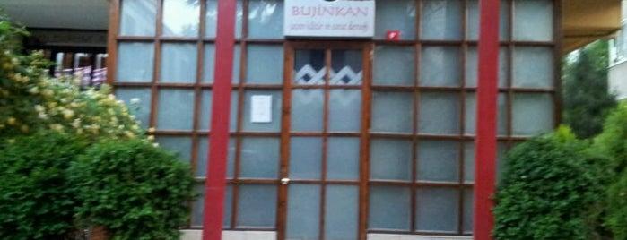 Bujinkan Turkey Haburamu Dojo is one of Posti che sono piaciuti a Okan.
