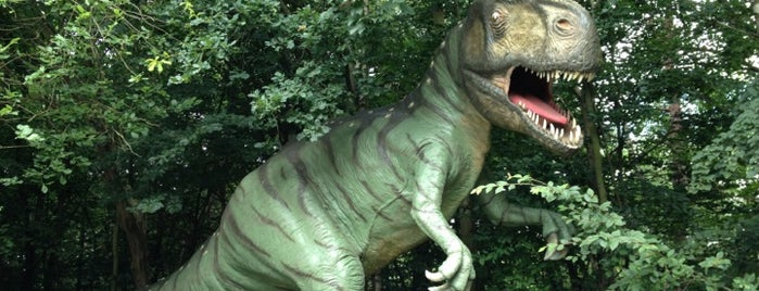Dinosaurierpark Münchehagen is one of Steinhuder Meer für Kinder.