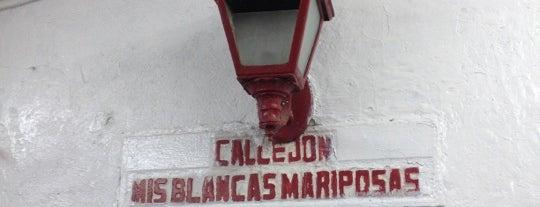Mis Blancas Mariposas is one of Locais salvos de Luis Arturo.