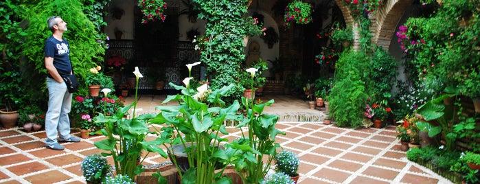 Casa-Patio de la calle Agustin Moreno, 43 is one of Visita virtual a los Patios de cordoba.