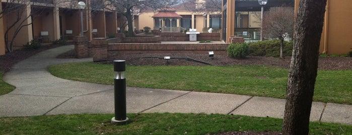 Courtyard by Marriott Detroit Dearborn is one of สถานที่ที่ Jorge ถูกใจ.