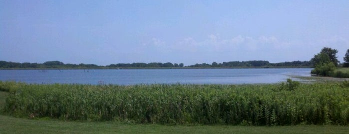 Shabbona State Park is one of Illinois State Parks.