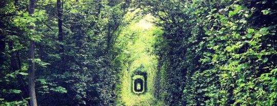 Тунель Кохання is one of Far Far Away.
