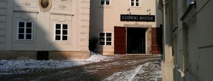 Ludwig Reiter is one of Wien / Vienna.