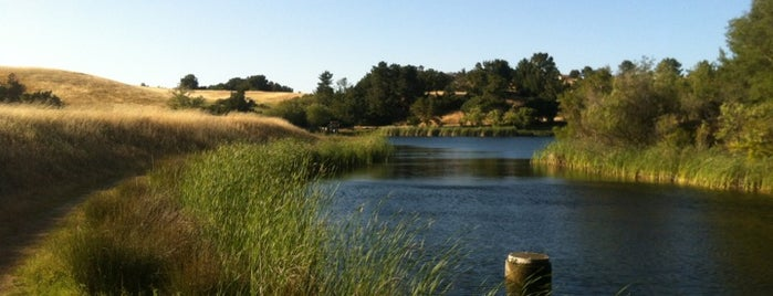 Palo Alto Foothills Park is one of Bay Area Activities.