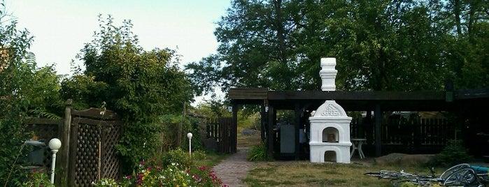 Pajta Galéria is one of Tempat yang Disukai Anna.