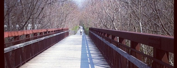 Capital Crescent Trail - Bethesda is one of Washington DC' Great Outdoors.