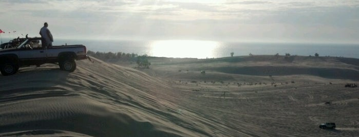 Silver Lake Sand Dunes is one of Fun Go-to-Spots.