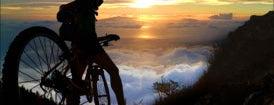 Haleakala Bike Company is one of Things to do in Maui.