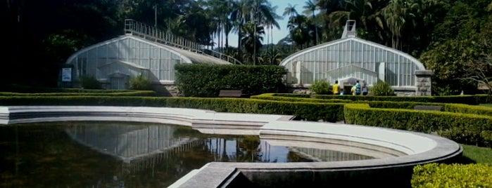 Jardim Botânico de São Paulo is one of Sampa 460 :).