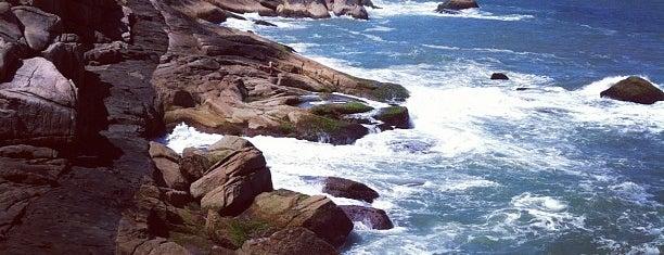 Praia da Galheta is one of Floripa.