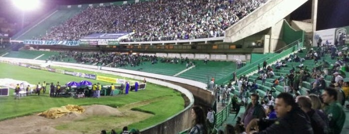 Estádio Brinco de Ouro da Princesa is one of Kárenさんのお気に入りスポット.