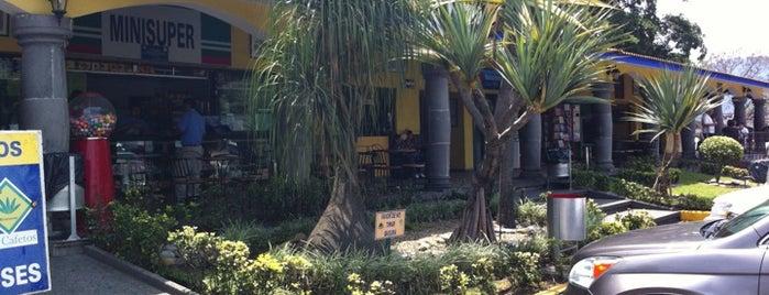 Los Cafetos Restaurant is one of José : понравившиеся места.