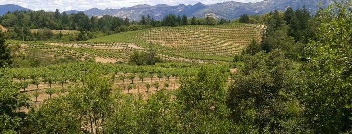 Dunn Vineyards is one of Wineries & Vineyards.