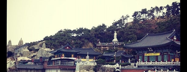 Haedong Yonggungsa Temple is one of SolBridgers' Survival Guide.