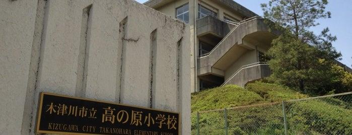 木津川市立 高の原小学校 is one of Lieux qui ont plu à Shigeo.