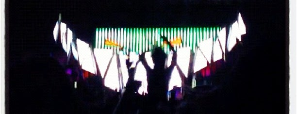 Electric Daisy Carnival is one of bucket list.