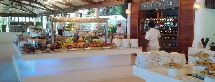 Lily Maa Restaurant is one of Locais curtidos por Sara.