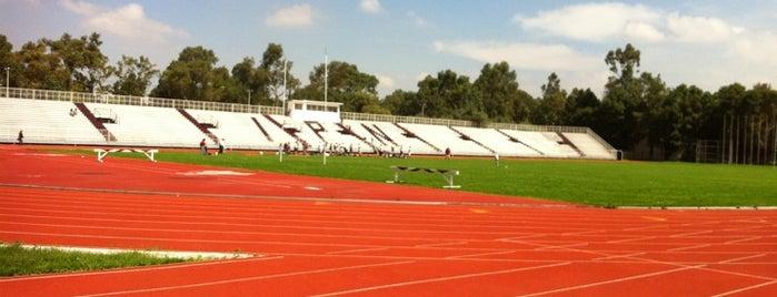Estadio Wilfrido Massieu is one of Football.