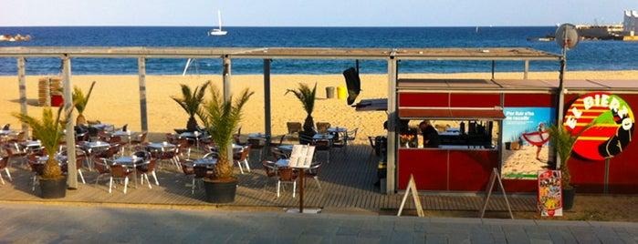 El Bierzo is one of chiringuitos playa barcelona.
