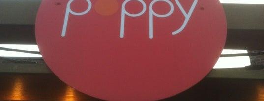 Poppy is one of 2012 MLA Seattle.