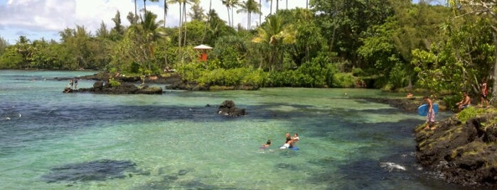 Carlsmith Beach Park is one of Enjoy the Big Island like a local.