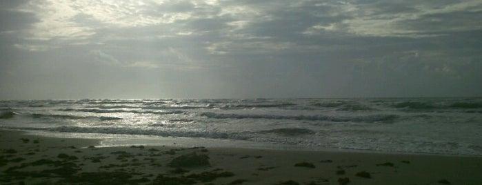 Sea Gull Condominums is one of Texas Coast.