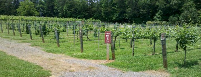 Westbend Vineyards is one of Lugares favoritos de Pamela.