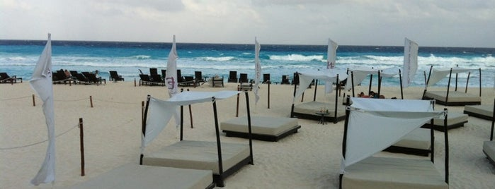 The Beach Club is one of Swimmies Cancún.