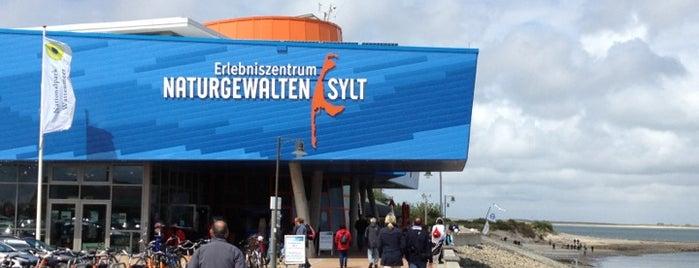 Erlebniszentrum Naturgewalten is one of Sylt ••Spotted••.