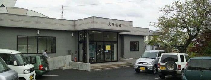 大坊温泉 大坊保養センター is one of Lugares favoritos de 高井.