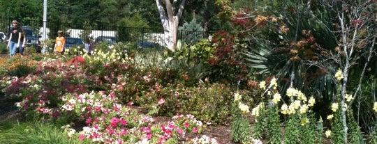 Mercer Arboretum & Botanic Gardens is one of Houston, TX.